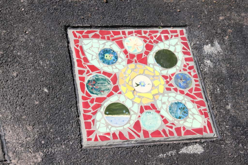 Mary Binks Wetlands Community Mosaic Project 7