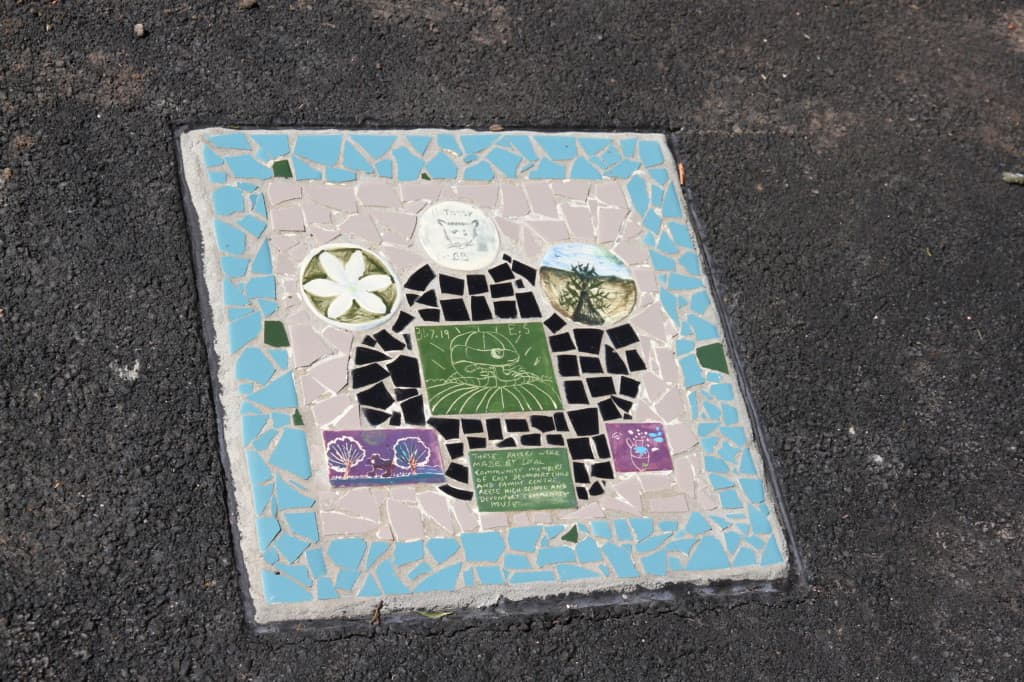 Mary Binks Wetlands Community Mosaic Project 8