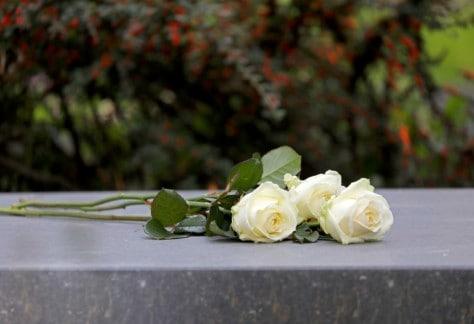 Private Burials devonport web