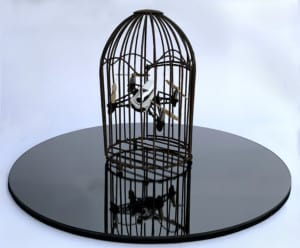 Darryl Rogers Dead Parrot 2019 found object assemblage drone bird cage rust mirror