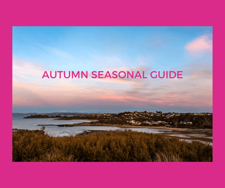 Autumn Activities Guide 2020