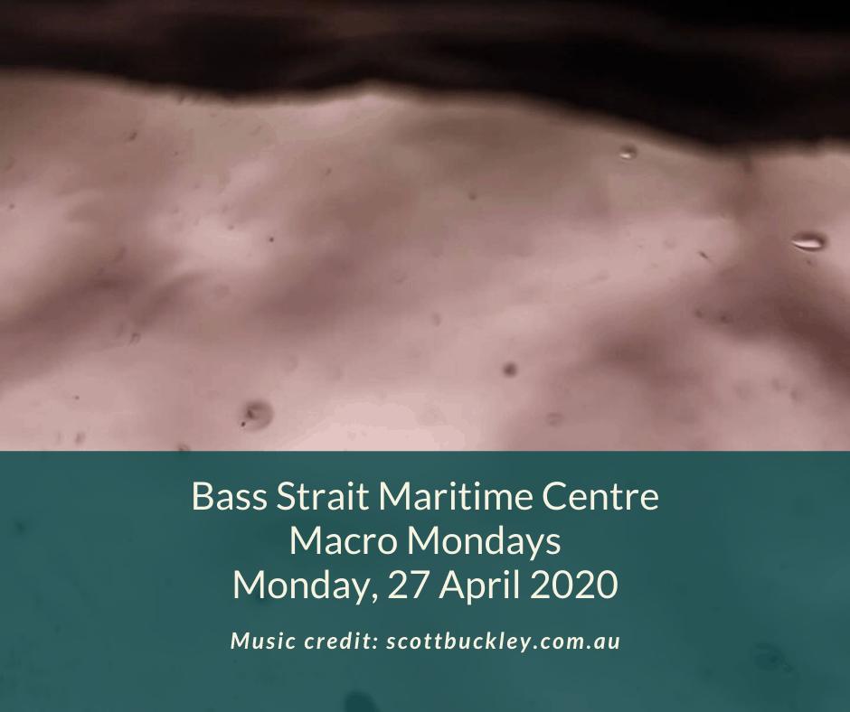 BSMC Macro Mondays 27 April May 2020