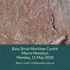 BSMC Marco Mondays11 May 2020