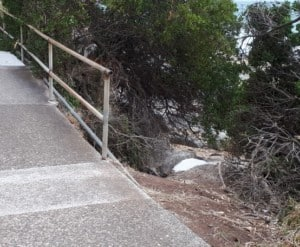 POS Bluff Headland Handrail replacement and extension2
