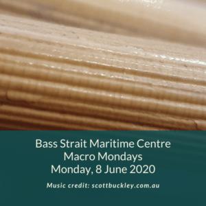 BSMC Marco Mondays 8 June 2020