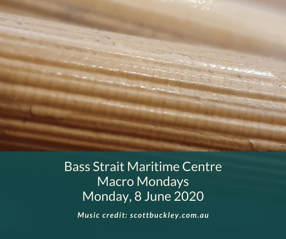 Macro Mondays – 8 June 2020