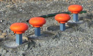 ECM 34783 v1 E000041 Stepping Stones jpg