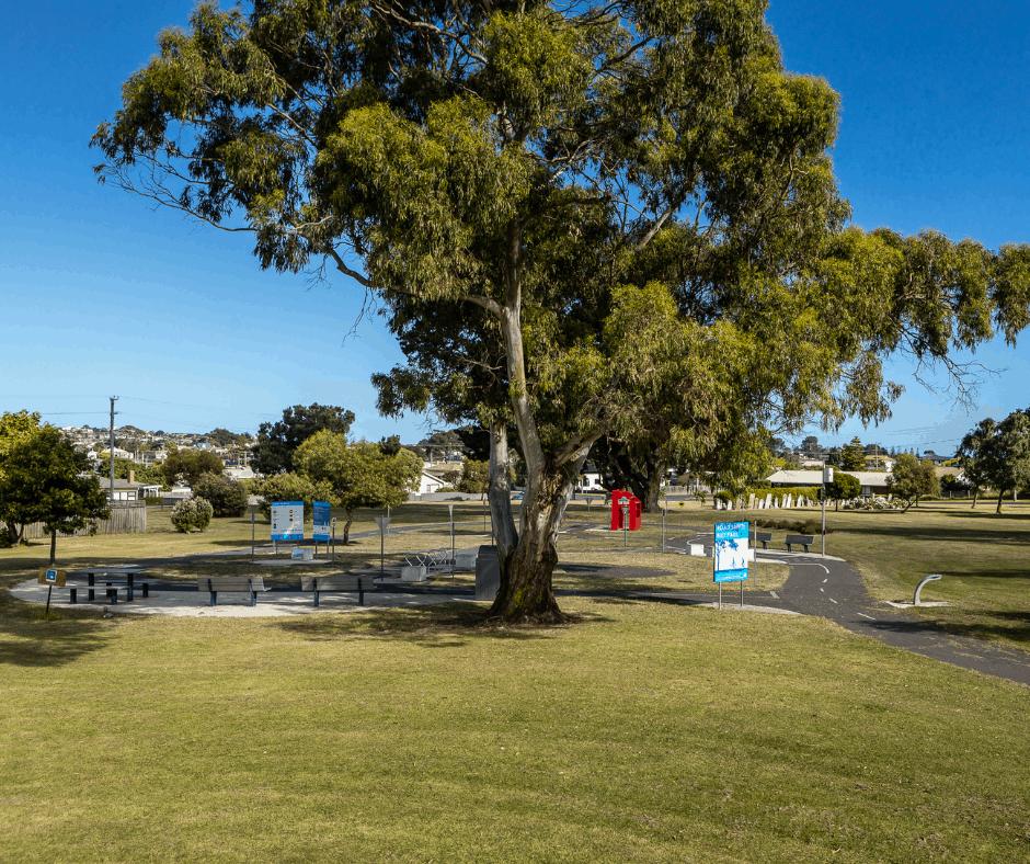 Pioneer Park Image Credit Kelly Slater 2