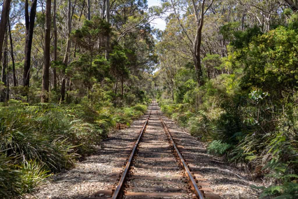 Don Reserve Railway line Kelly Slater