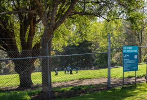 Don Reserve dog park Kelly Slater