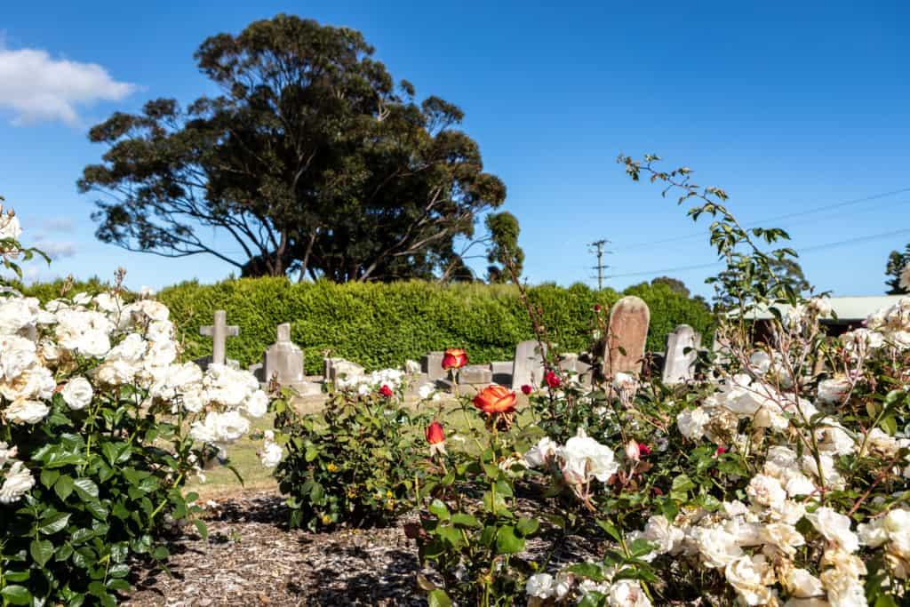 Pioneer park Cemetery 3 Kelly Slater